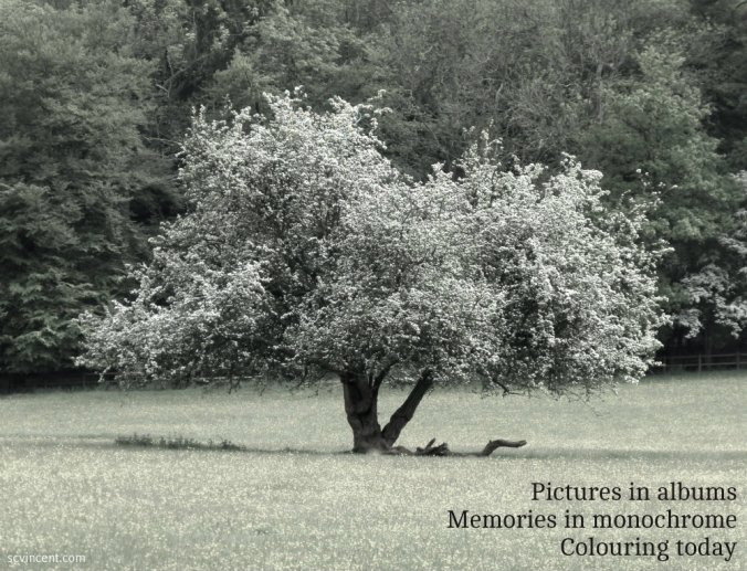 pictures-in-albums-memories-in-monochrome-colouring-today