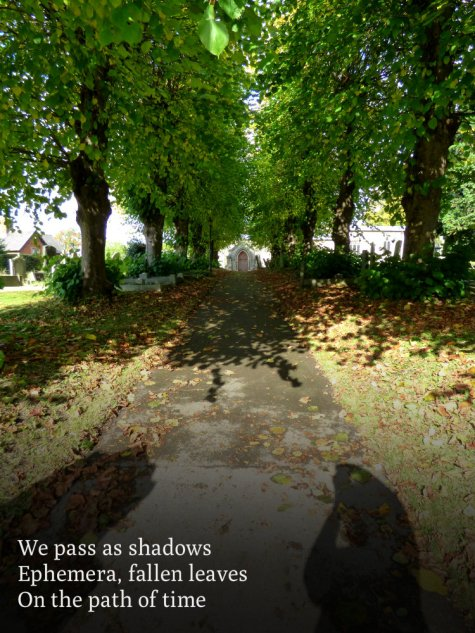 we-pass-as-shadows-ephemera-fallen-leaves-on-the-path-of-time