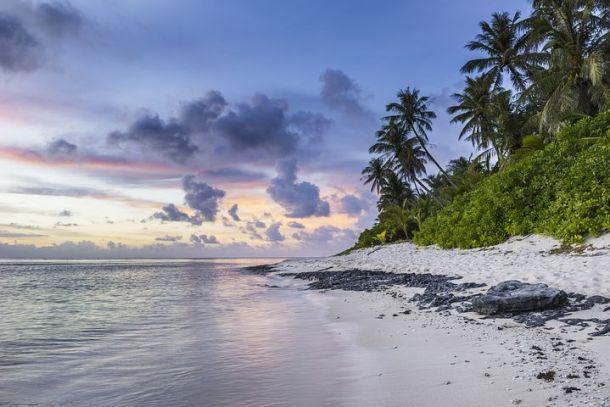 beach-1209726__480