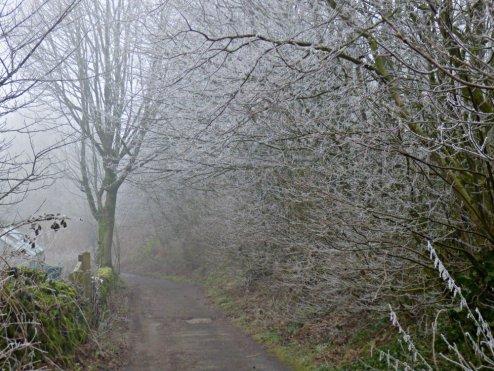 frost-fog-derbyshire-hermits-008