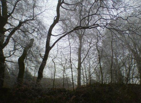 frost-fog-derbyshire-hermits-010
