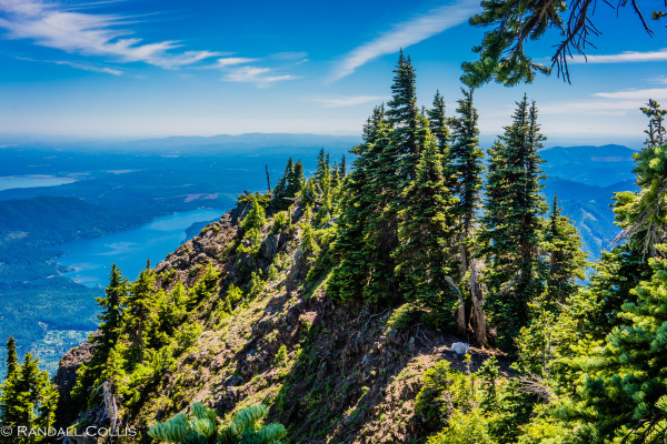 olympic-national-forest-hood-canal-2