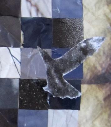 crow-close-up-3