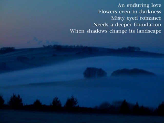 image-of-foggy-dawn-an-enduring-love-flowers-even-in-darkness-misty-eyed-romance-needs-a-deeper-foundation-when-shadows-change-its-landscape