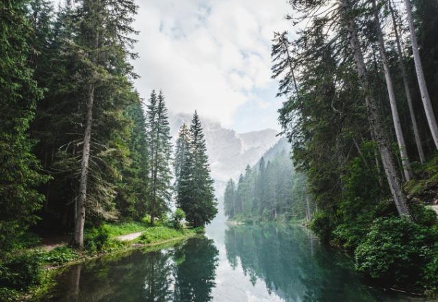 landscape-1866579_1280