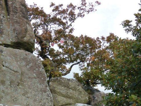 sheep-hordrons-nine-stones-robin-hoods-067