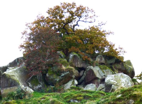 sheep-hordrons-nine-stones-robin-hoods-124