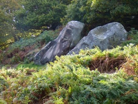 sheep-hordrons-nine-stones-robin-hoods-169