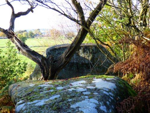 sheep-hordrons-nine-stones-robin-hoods-199
