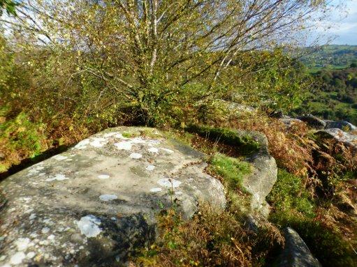 sheep-hordrons-nine-stones-robin-hoods-205