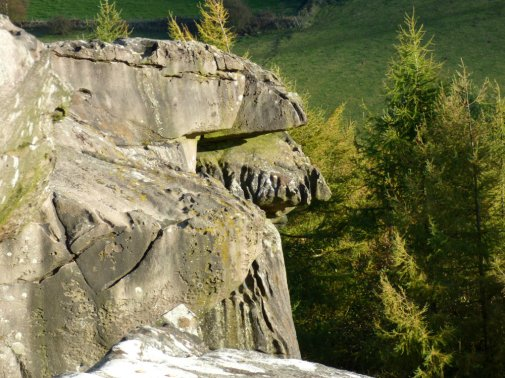 sheep-hordrons-nine-stones-robin-hoods-218