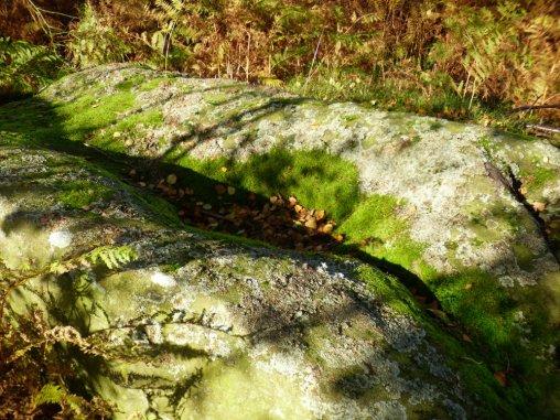 sheep-hordrons-nine-stones-robin-hoods-227