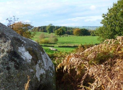 sheep-hordrons-nine-stones-robin-hoods-245