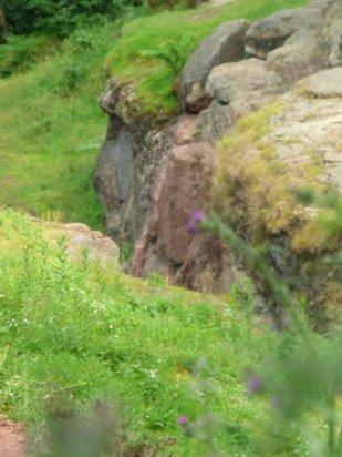 Wales llandudno, alderley, mines, 288