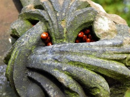 an old, carved stone whose recesses are stuffed with red and black ladybirds.