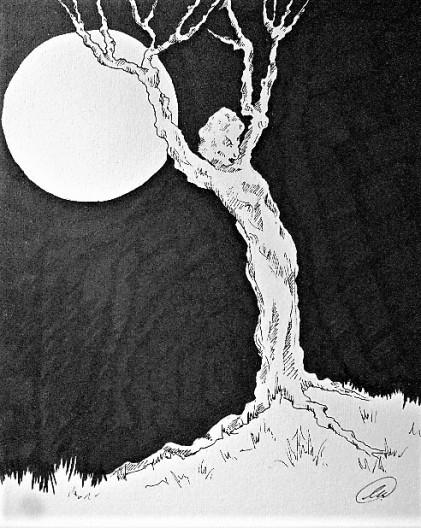 Living wood, illustration, Sue Vincent